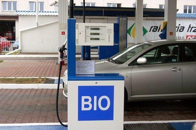 Tylko biopaliwa mogą być tańsze /INTERIA.PL