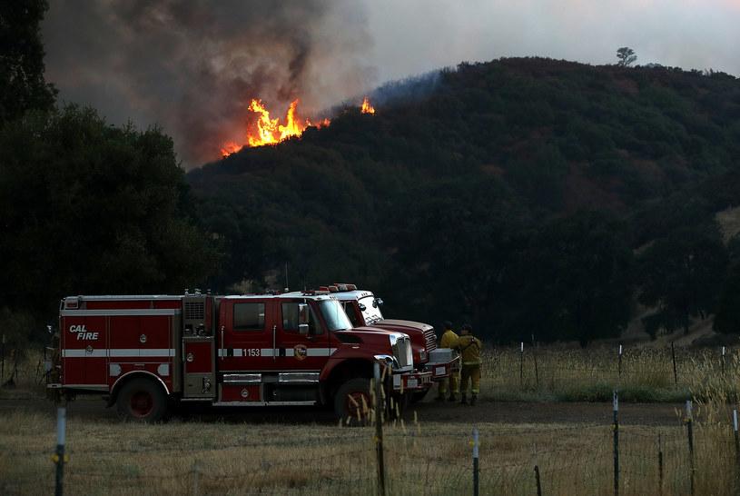 Tylko w ciągu miesiąca Kalifornia wydała około 130 mln dolarów na walkę z pożarami /JUSTIN SULLIVAN / GETTY IMAGES NORTH AMERICA /AFP