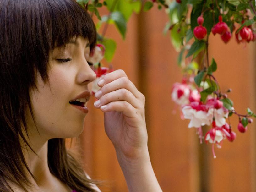 Typowe objawy alergii to katar sienny, łzawienie, zmiany skórne  /© Bauer