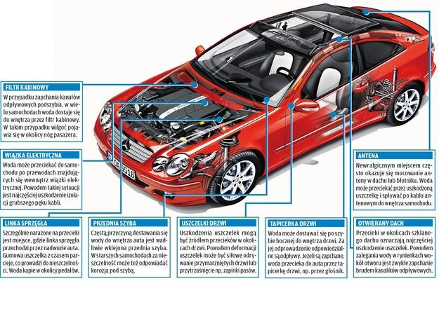 Typowe źródła przecieków /Motor