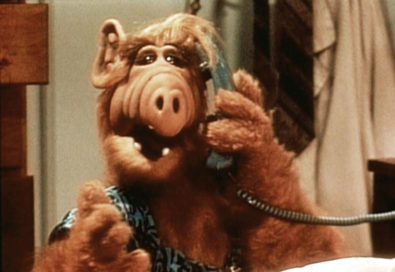 "Tytułowy bohater serialu ""Alf"" /AKPA"