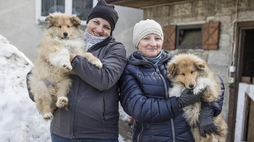 U Emilii pojawił się mały szczeniak, wkrótce pojawi się również mały bobas! /FOKUS TV