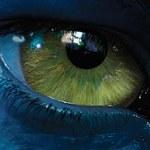Ubisoft uważa telewizję 3D za przyszłość branży gier