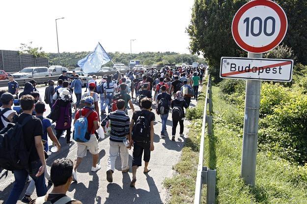 Uchodźcy i migranci ekonomiczni to dwie osobne grupy /EPA