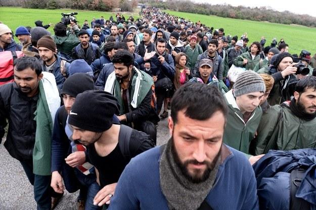 Uchodźcy w Europie, zdj. ilustracyjne /AFP