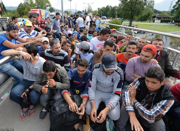 Uchodźcy w pobliżu granicy austriacko-niemieckiej, 17.09.2015 /AP/FOTOLINK /East News