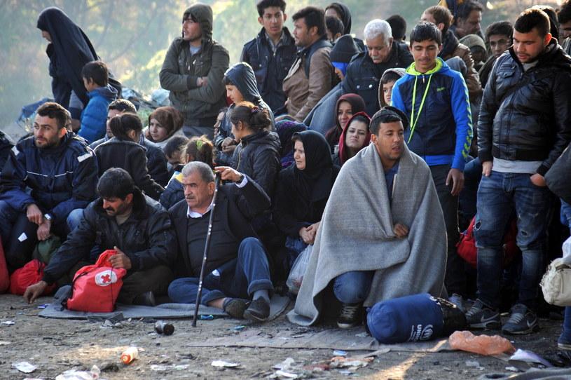 Uchodźcy, zdj. ilustracyjne /NIKOLAS GIAKOUMIDIS /PAP/EPA