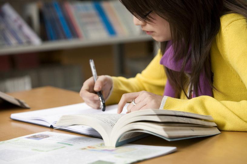 uczące się dziecko /© Photogenica