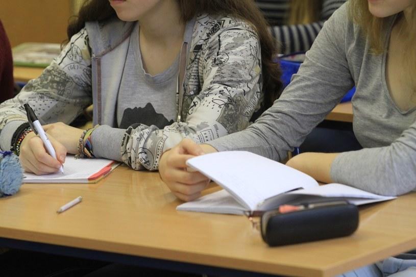Uczniowie na lekcji, zdj. ilustracyjne /Tomasz RYTYCH /Reporter