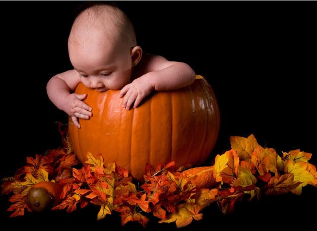 Udekoruj dom z dzieckiem na Halloween! /INTERIA.PL