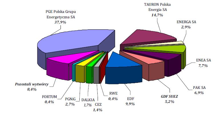 Udział poszczególnych firm w rynku, źródło: Wysokienapięcie.pl /&nbsp
