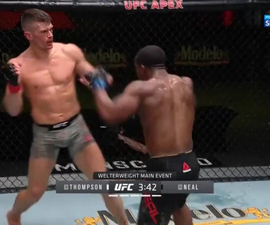 UFC. Stephen Thompson - Geoff Neal - skrót walki (POLSAT SPORT). WIDEO