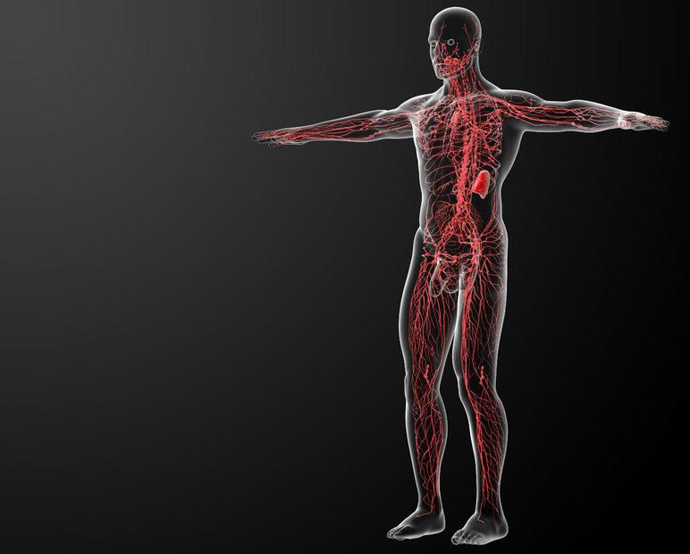 Układ limfatyczny u cukrzyków nie działa prawidłowo /123RF/PICSEL