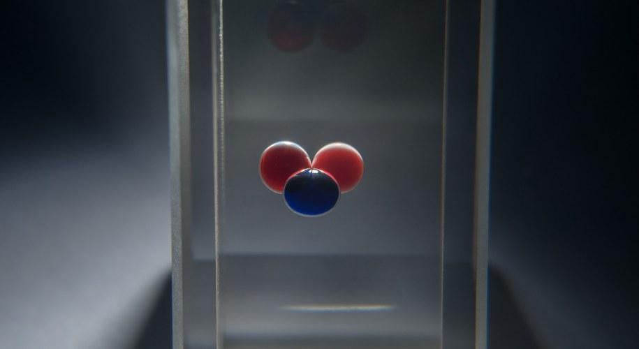 Układ trzech kropel, między którymi krążą fronty chemiczne, może pełnić rolę chemicznego bitu /IChF PAN, Grzegorz Krzyżewski /materiały prasowe