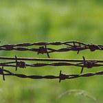 Ukraina pomoże Litwie w kryzysie migracyjnym. Przekaże drut kolczasty