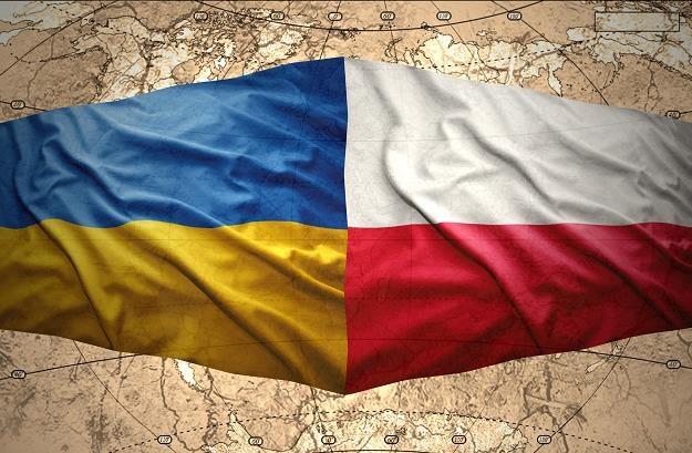 Ukraina wprowadziła embargo na wieprzowinę z dwóch województw w Polsce /©123RF/PICSEL