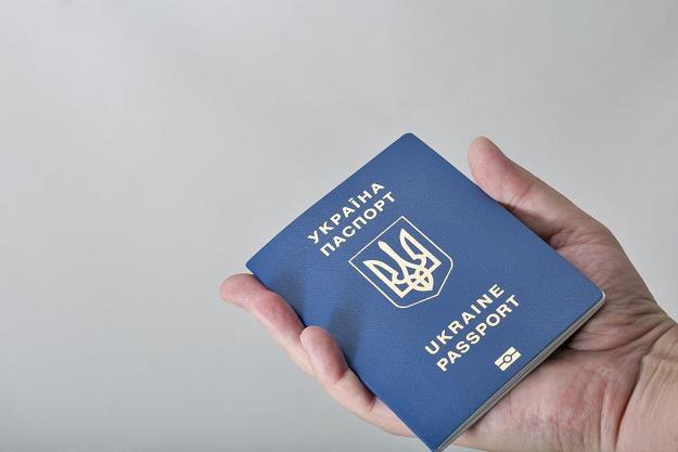 Ukraińcy ratują ZUS... /©123RF/PICSEL