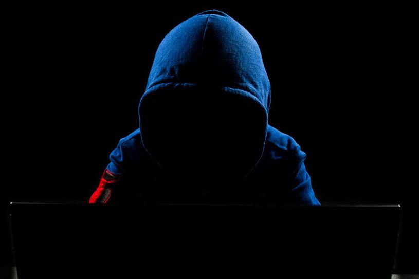 Ukraińskie SBU zatrzymała groźnego hakera /123RF/PICSEL