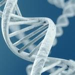 Ukryte informacje w naszym DNA