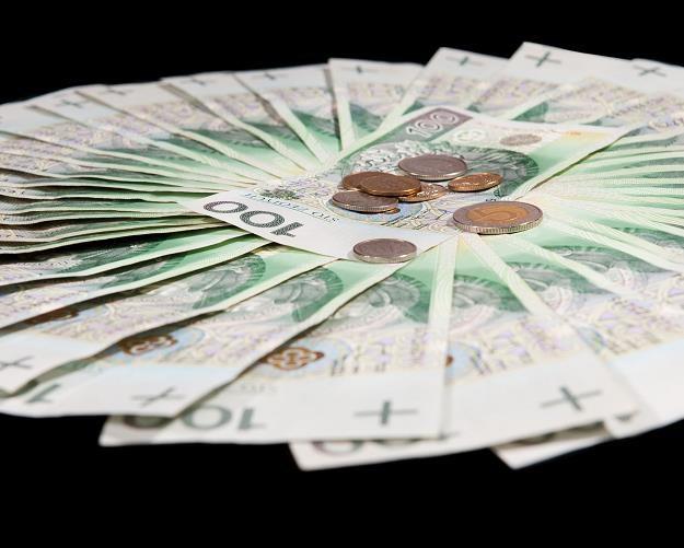 Ukrywanie majątku nadal się opłaca /©123RF/PICSEL