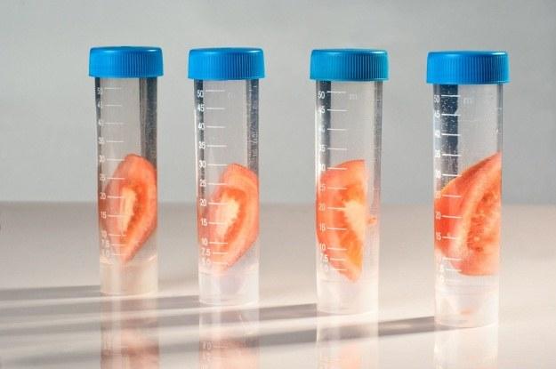 Ulepszana nanocząstkami żywność z probówek to fakt /123RF/PICSEL