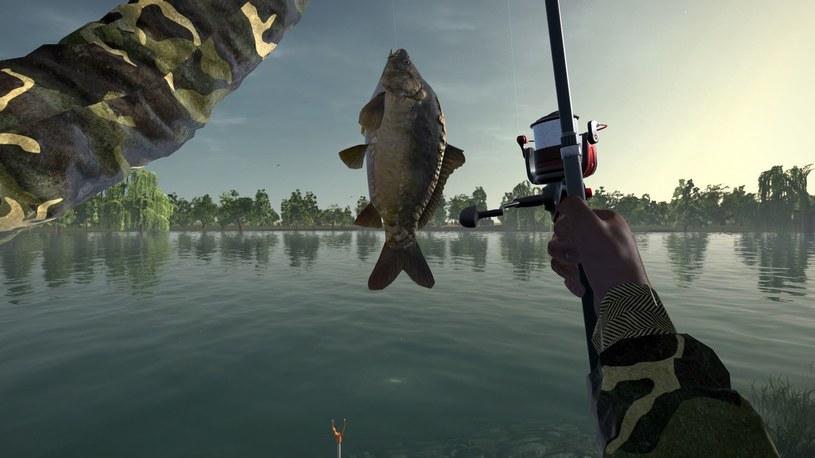 Ultimate Fishing Simulator /materiały prasowe