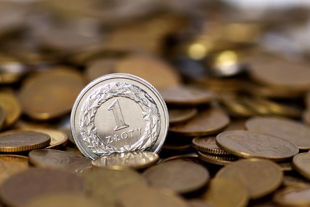 Umocnienie złotego może być spowodowane zleceniami od inwestorów planujących zakup obligacji /© Panthermedia
