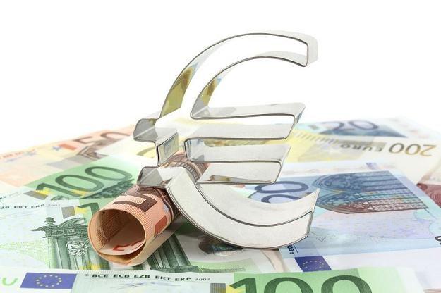 Unia Europejska nie przetrwa bez euro! /©123RF/PICSEL