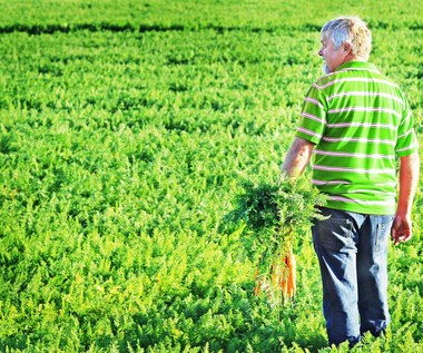 Unia ograniczy stosowanie pestycydów i nawozów