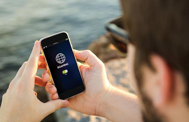 Unia, znosząc roaming, nie zlikwidowała hurtowych stawek, które operatorzy muszą płacić między sobą /©123RF/PICSEL