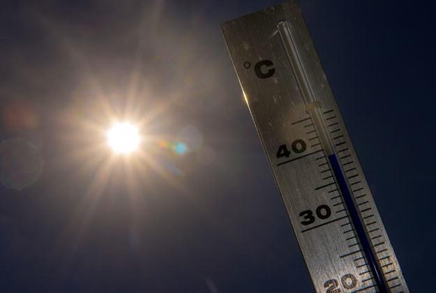 Upały mają potrwać do końca tygodnia /AFP