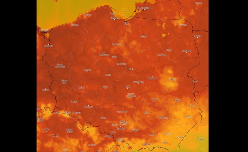 Upały nad Polską /IMGW /materiały prasowe