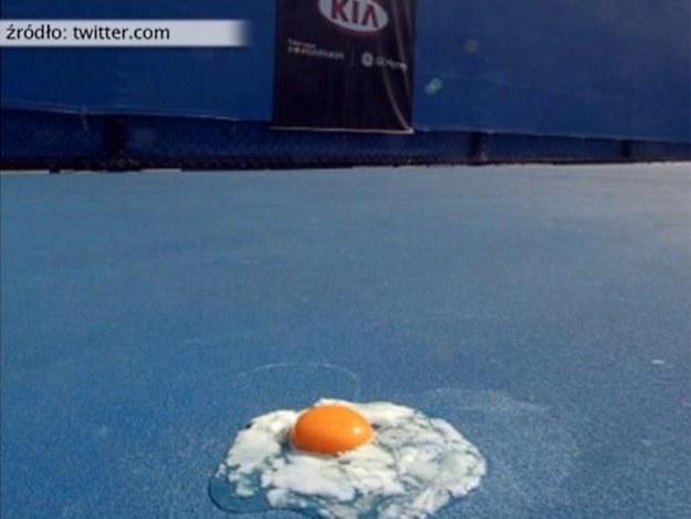 Upały podczas Australian Open są koszmarem dla tenisistów /Internet