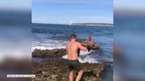 Uratował rekina, który utknął w skalnej pułapce