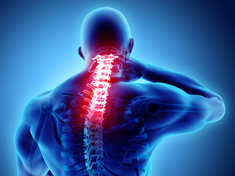 Urazy rdzenia kręgowego będzie można leczyć za pomocą komórek macierzystych? /123RF/PICSEL