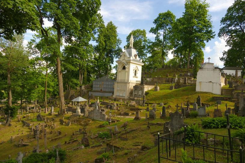 Urokliwa Rossa, na której czuć ducha przeszłości, to jedna z najstarszych nekropolii w Europie /123RF/PICSEL