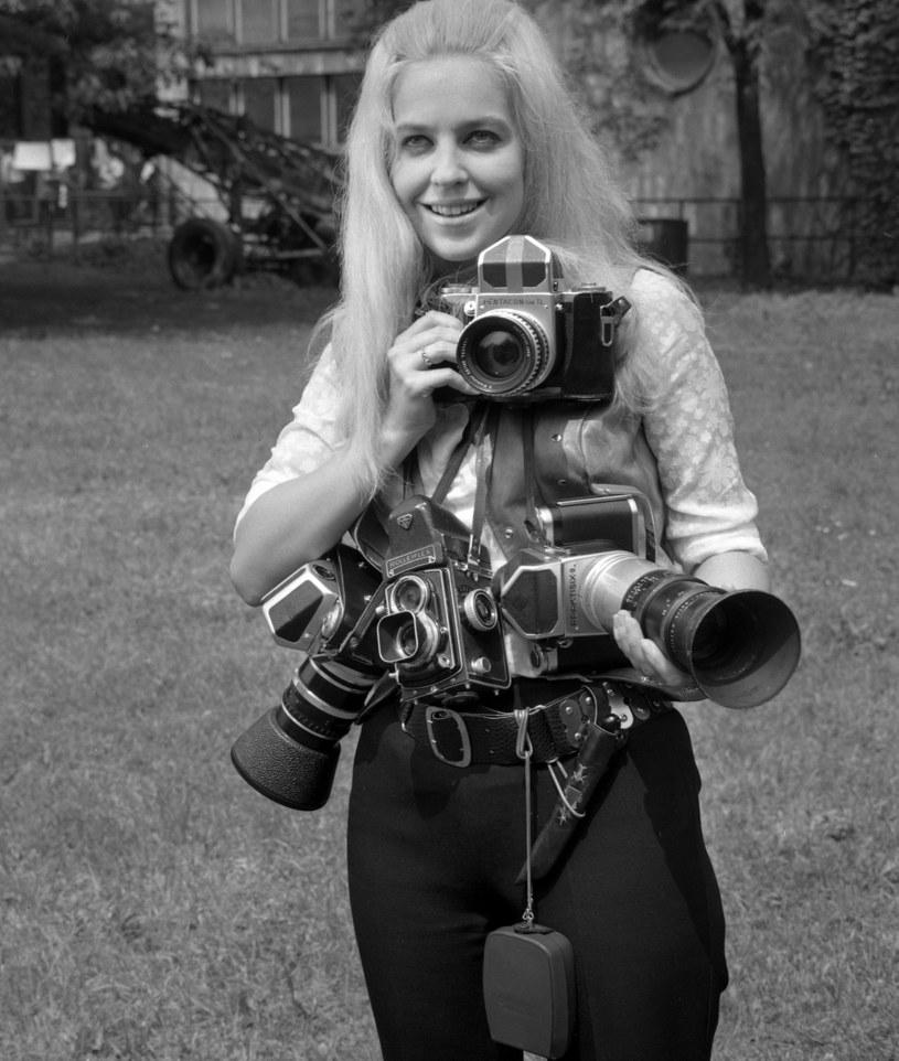 Urszula Sipińska w latach 70. podczas festiwalu w Opolu /Andrzej Wiernicki /Agencja FORUM