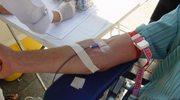 Urzędnicy oddali krew
