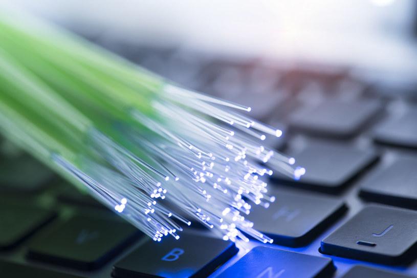 USA chce stworzyć bezpieczną odmianę Internetu /123RF/PICSEL