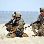 USA: Członkowie Navy SEALs ukarani za ujawnienie tajnych informacji