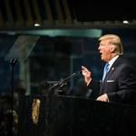 USA. Jak rząd szkodzi gospodarce twierdząc, że ją chroni