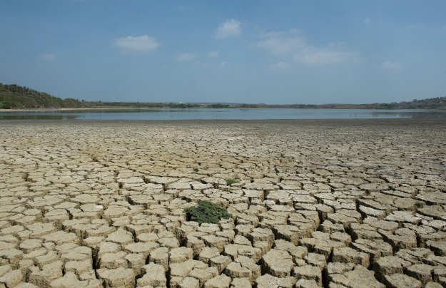 USA juz teraz zmagają się z kilkunastoletnią suszą /AFP