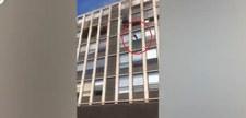 USA: Kot wyskoczył z okna na piątym piętrze. Uciekał przed pożarem