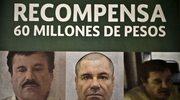 USA: Ogromna nagroda za pomoc w ujęciu bossa narkotykowego
