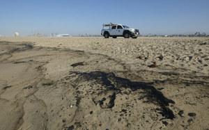 USA: Plama ropy długa na 10 km. Umierają ptaki i ryby