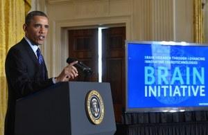 USA wyda 110 mln dol. na badania ludzkiego mózgu