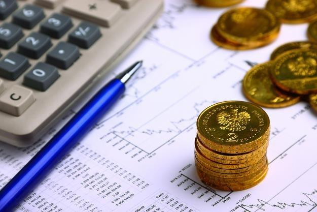 Ustalanie podatkowych różnic kursowych /©123RF/PICSEL