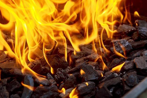 Ustawa o paliwach zabezpiecza jedynie interes spółek węglowych /©123RF/PICSEL