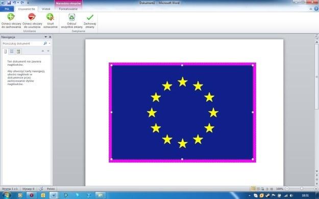 Usuwanie tła to jedna z wielu nowych funkcji edycji grafiki w Office 2010 /INTERIA.PL