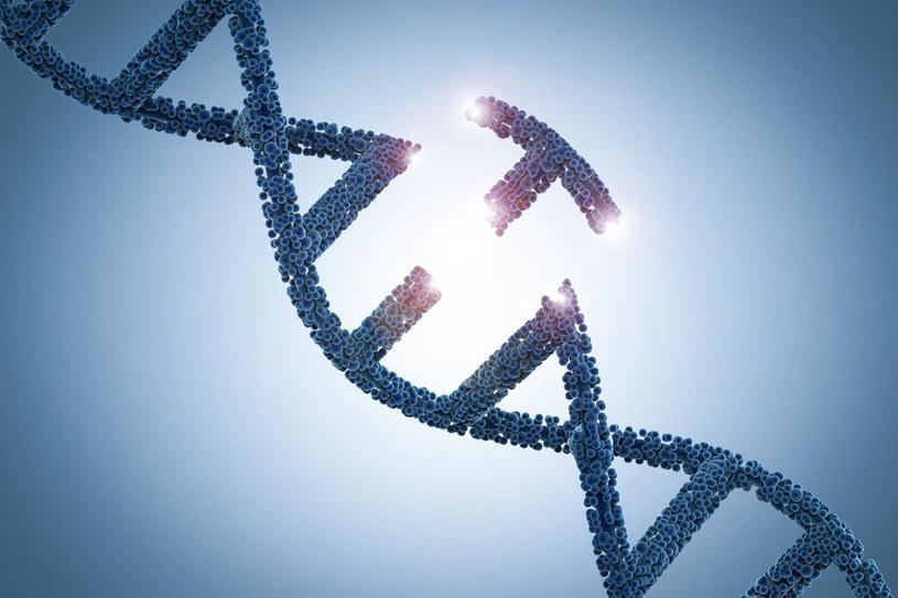Uszkodzenie genu /©123RF/PICSEL